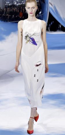 Christian Dior Fall 2013 3