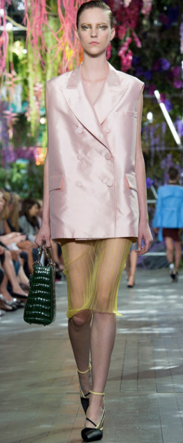 Christian Dior Spring:Summer 2014 7