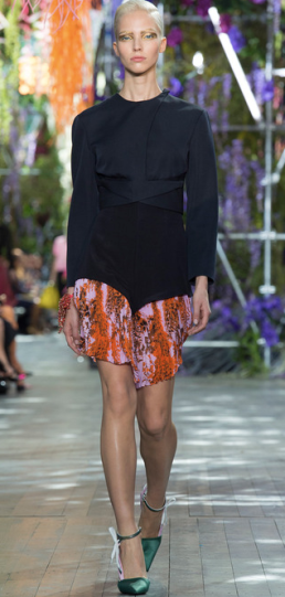 Christian Dior Spring:Summer 2014