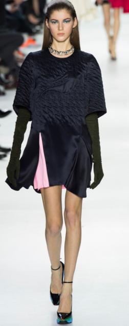Christian Dior Fall 2014 1