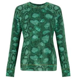Green Python Sweatshirt